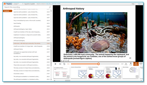 Squid and Crayfish - Panopto Lecture Capture Platform