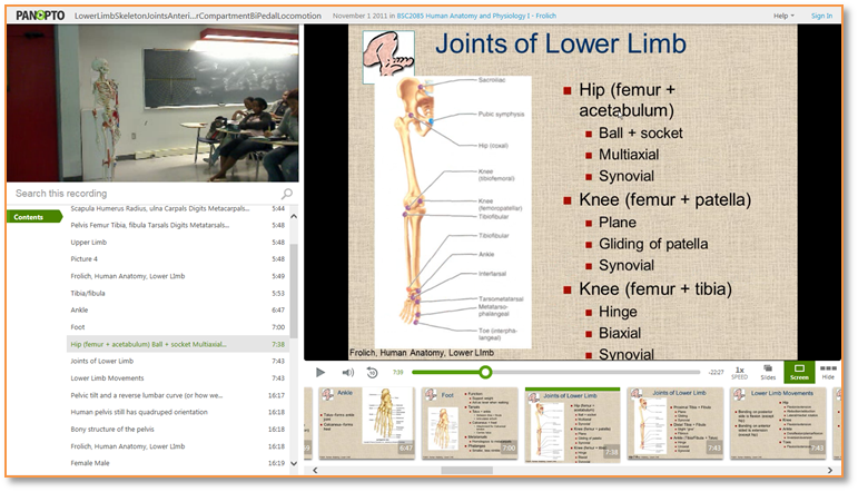 Bones of the Lower Limb - Panopto Video Presentation Software