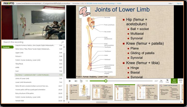 下肢の骨 - ビデオプレゼンテーションソフトPanopto
