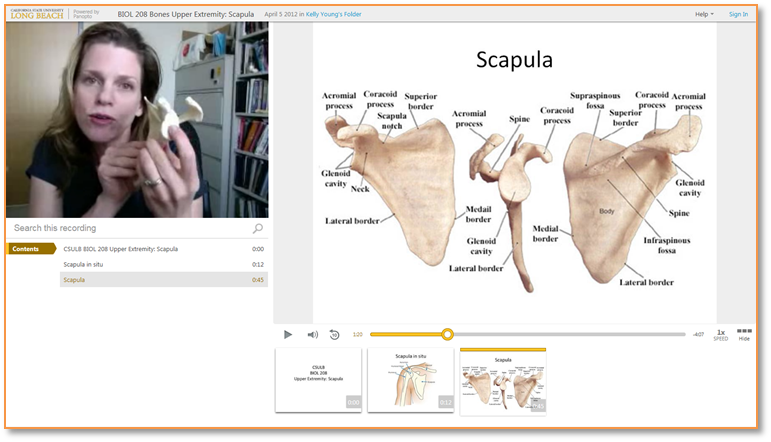 Bones of the Scapula - Panopto Video Presentation Software