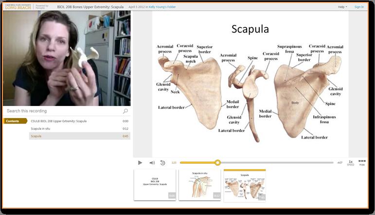 肩甲骨の骨 - Panopto Video Presentation Software