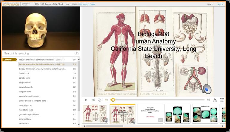 頭蓋骨の骨 - Panopto ビデオプレゼンテーションソフトウェア