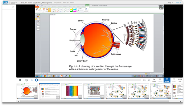 How We See - Panopto Video Presentation Software