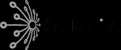 Logo Kollective