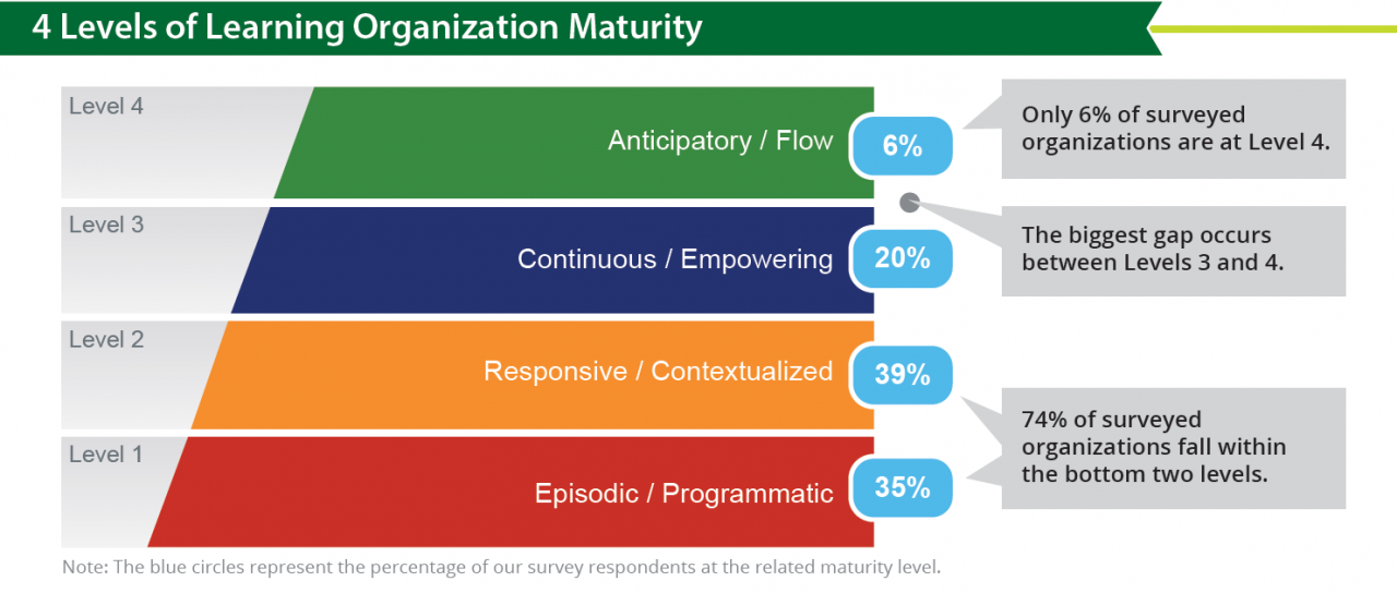Bersin Learning Organization Maturity Model